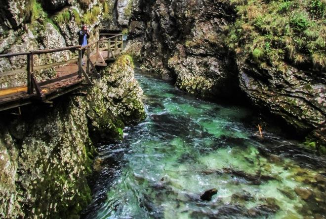 Vintgar Gorge Bled